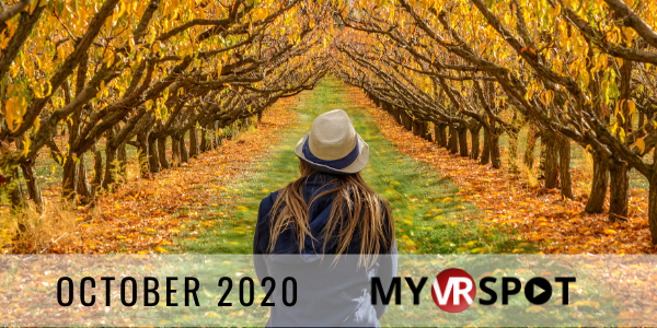 MyVRSpot's October 2020 Newsletter